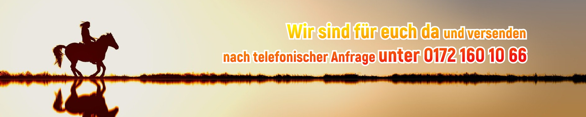 frieslaender-reitsport.de